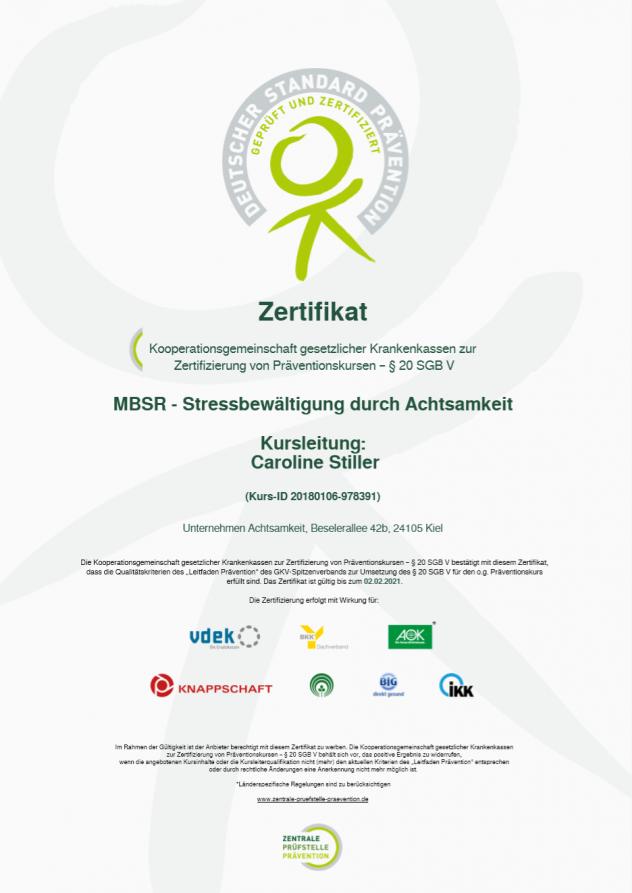 Funky Online Projektmanagement Zertifikat Motif - Online Birth ...